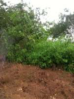 1 hectare land for Sale