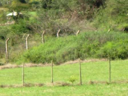 Prime ½ Acre Land For Sale In Karen Karen - image 2