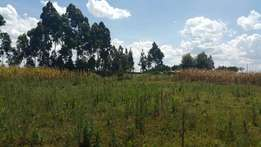 1/2 acre at ilula with title