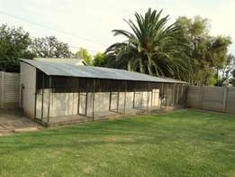 Fancy/Racing Pigeon lofts and material for sale