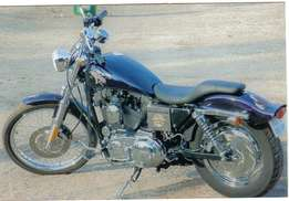 1200 Sportster for sale. Excellent condition. 2003 Model