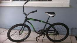 Cruiser bicycles Female and Male