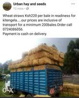 Straws ksh220 inclusive transport