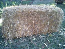 Wheat Straw Bales for sale