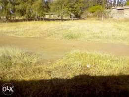 40x80 Plots for sale juja