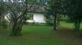 3br own compound to let in Lavington