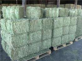Products For Animal Feed