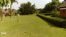 Naguru,half Acre for sale at 500,000$