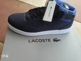 Lacoste For Sale