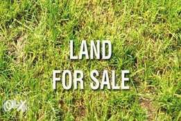 100x50 Land for sale at Ujevwu Town