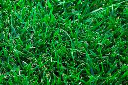 Lawn Installation and Deliveries