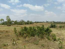 very prime residencial plots for sale in ruiru with ready titles