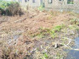 Acquire your land now in Isheri-Oshun