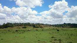 21 Plots. 1/4 Acre each For Sale in Kiserian