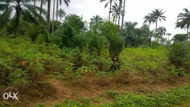 5.7acres of land at PTI junction in Warri for sale Warri - image 3