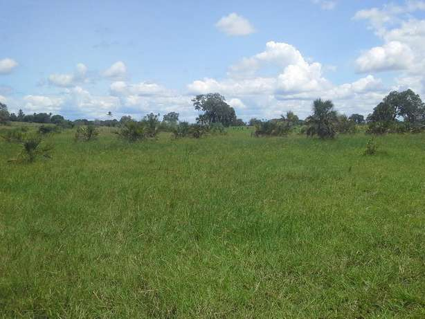 Good,well documented and Affordable Property for sale Diani Beach - image 7
