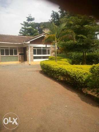 One bedroom Bungalow with a compound in Lavington Nairobi Lavington - image 1