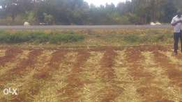 Land for sale 1acre in mwea Nyangati along embu Nairobi highway