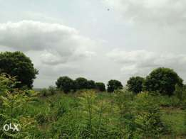 1500 plots For Sale Suitable for Industrial Purposes at Onne, R/S.