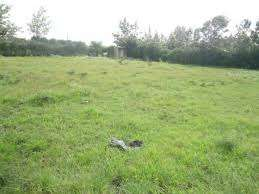 Thome Plot For Sale.