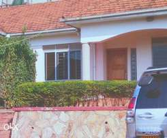 Semi-detached units for rent in Bukoto
