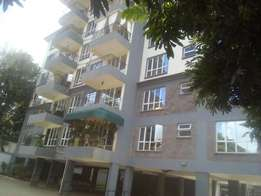 Beautiful 3 bedroom apartment with Dsq.