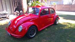 1967 VW beetle great condition
