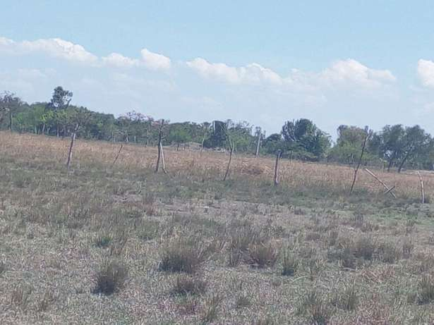 Prime and genuine plots for sale Sagana - image 2