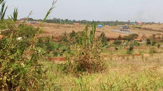 Prime plot for sale in Ruiru, Mugutha size 50 by 100. Mugutha - image 2