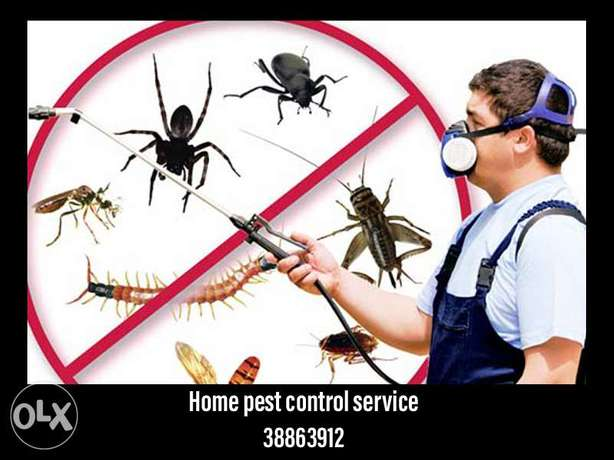 Home pest control service available