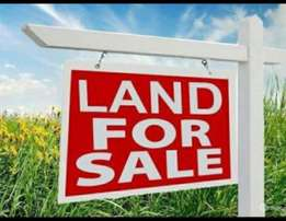 1/4 acre for sale in Wangige.