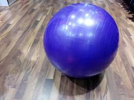 Stability Fitness physio ball