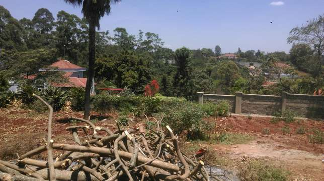 Thigiri ridge 0.5 acre at shs 55 million Nairobi CBD - image 4