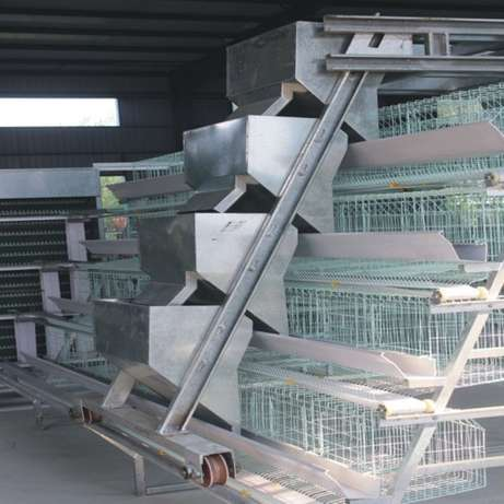 layer cages for sales Headlands - image 4