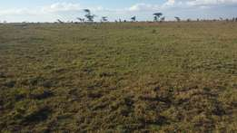 4 acres in Ngobit between Nyeri - Nyahururu at 250k per acre