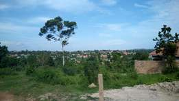 Titled plot of 25decimals in Bweyogerere Bbuto at 90m