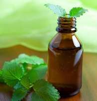 Peppermint oil essential oil mint oil