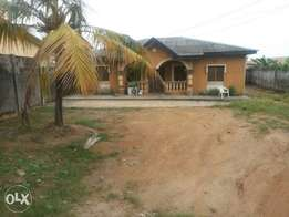 3 bedrooms bungalow on a full plot of land at Alagbole (C of O)