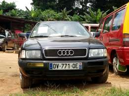 Audi 80 Tiger Face Dark Blue