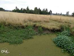 5acres land in Nyandarua with a stream across