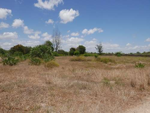 Land for Sale in Malindi. Malindi - image 5