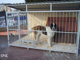 942e6b5fae100f Kojec Dla Psa - Akcesoria dla zwierząt w Kamienica Polska - OLX.pl