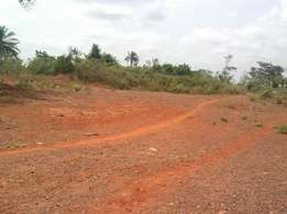 Titled plot for sale at Saasabi.