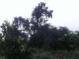 240acres, 3m per acre, Nakaseke-Butalangu, 5miles off Ngoma road.