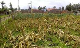 Quick sale!!! Plot for sale in Ngata