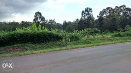1acre for sale Balozi muthaiga north