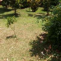 Nice (30x60ft) of plot of land for sale in kawuku-Entebbe road at 8m
