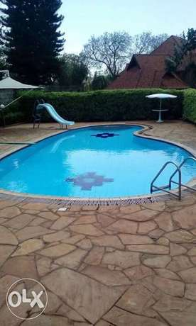 Swimming pool cleaning service Lavington - image 6