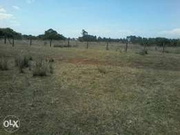 1/8 piece of land at Kipkenyo