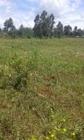 3 acres Soy Western